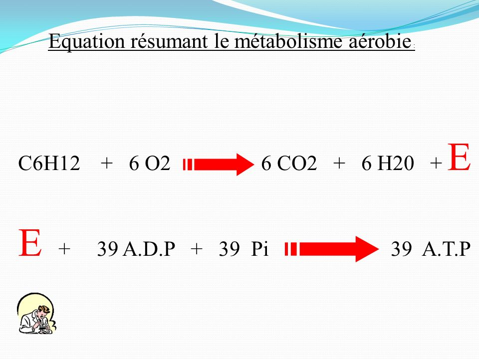 Equation résumant le métabolisme aérobie :