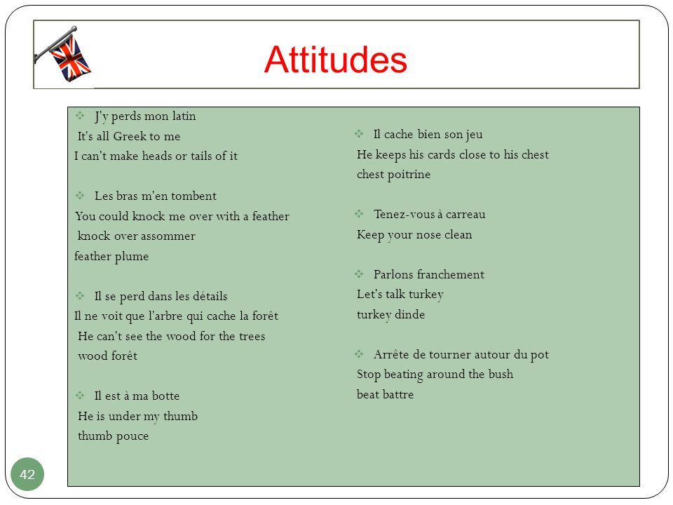 Attitudes J y perds mon latin It s all Greek to me