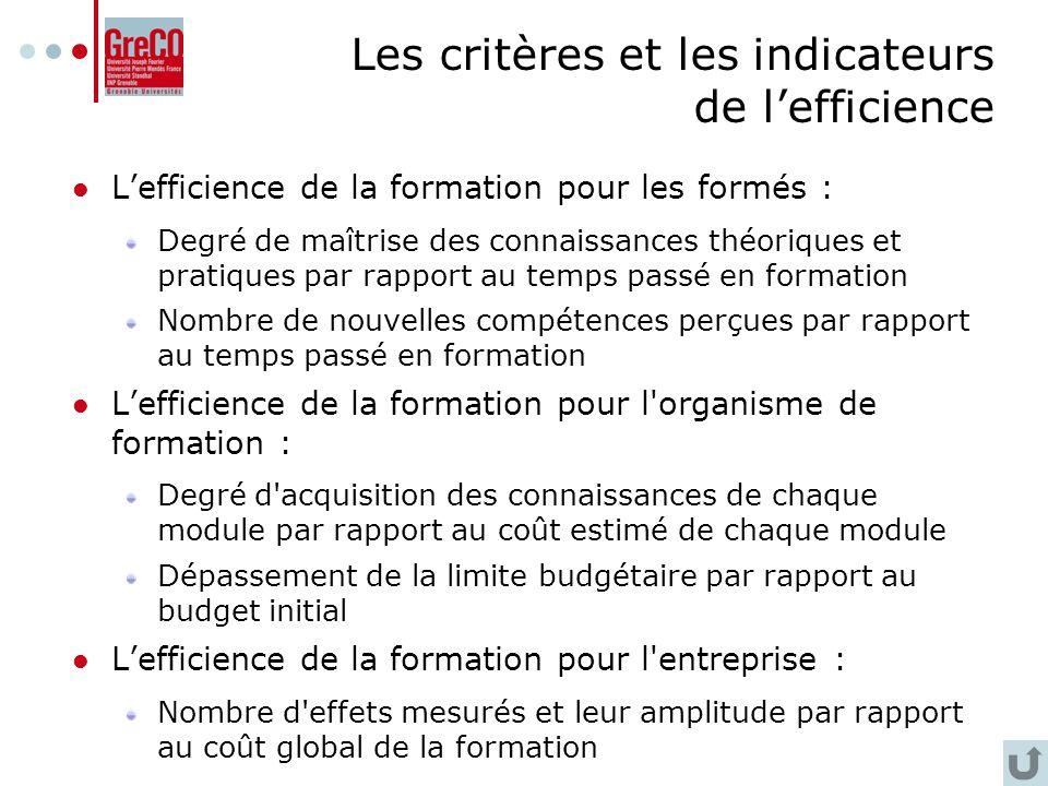 Les critères et les indicateurs de l'efficience