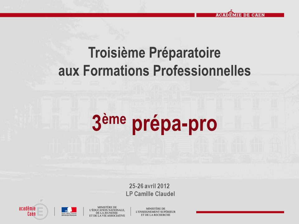 Troisième Préparatoire aux Formations Professionnelles
