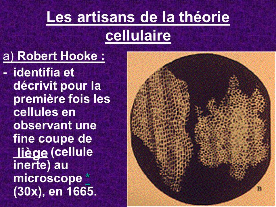 Les artisans de la théorie cellulaire