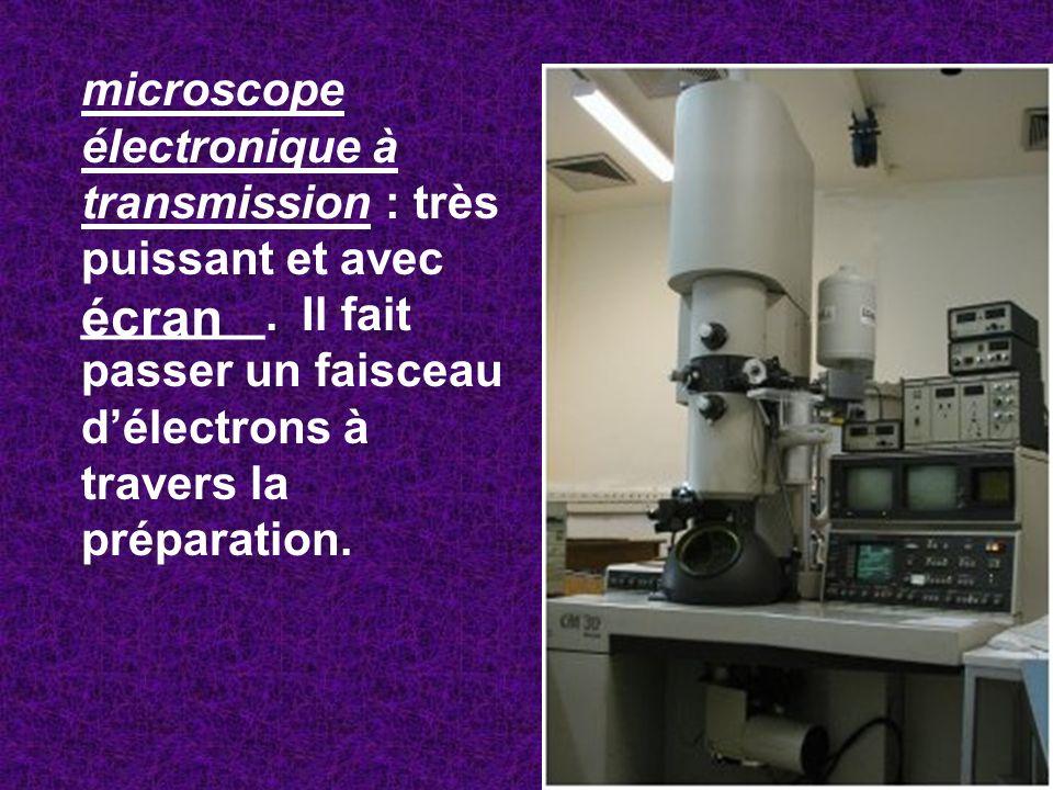 microscope électronique à transmission : très puissant et avec _______