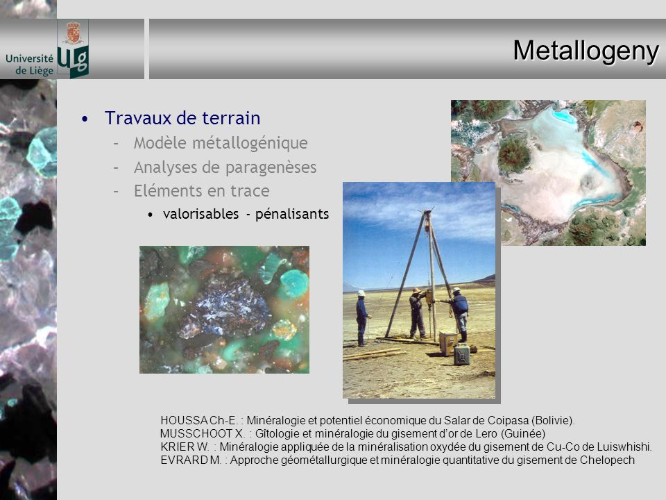 Metallogeny Travaux de terrain Modèle métallogénique