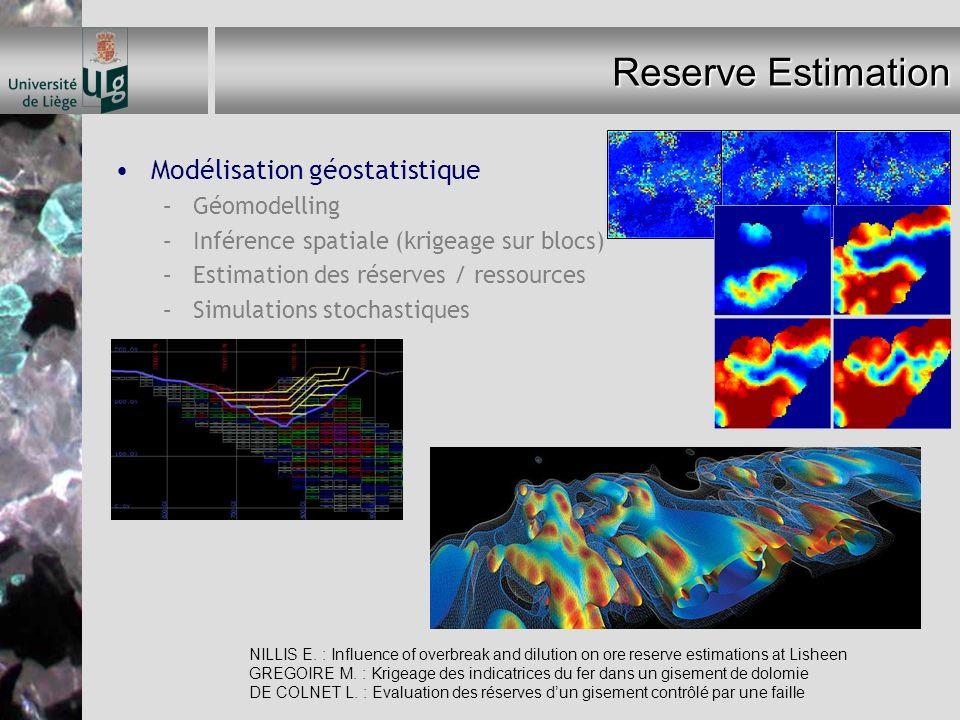 Reserve Estimation Modélisation géostatistique Géomodelling