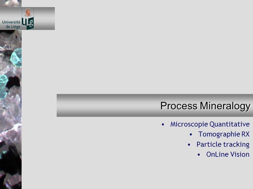 Process Mineralogy Microscopie Quantitative Tomographie RX