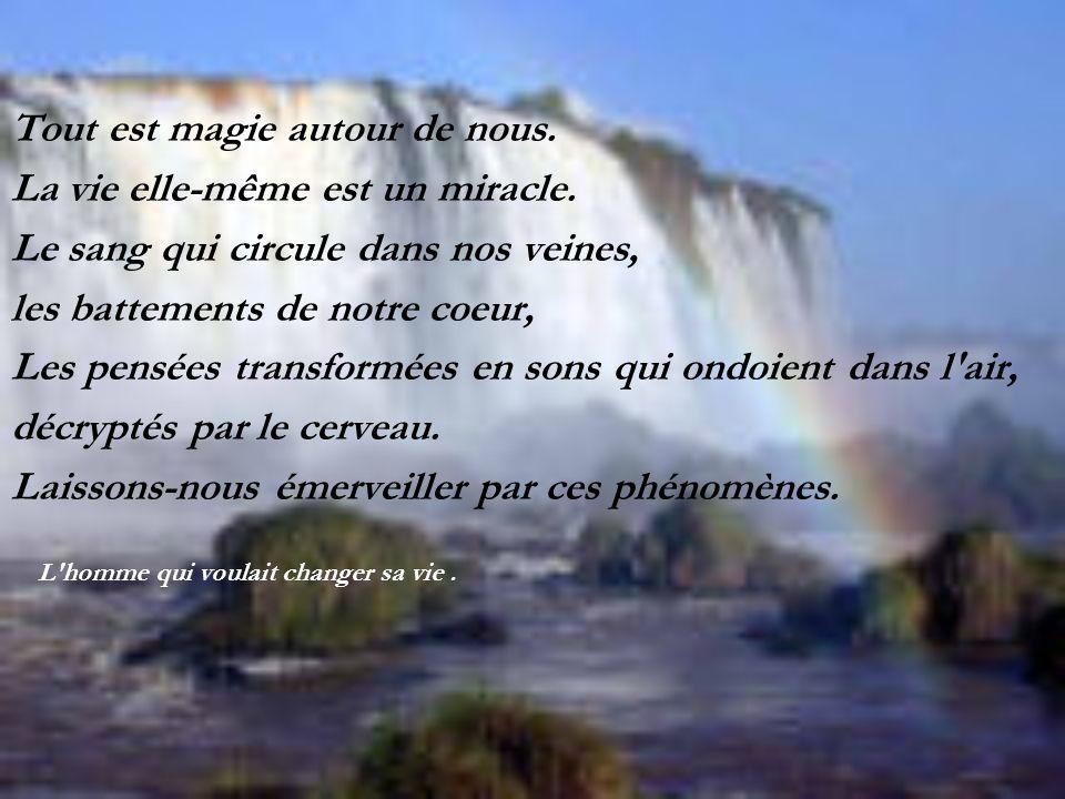 Tout est magie autour de nous. La vie elle-même est un miracle.