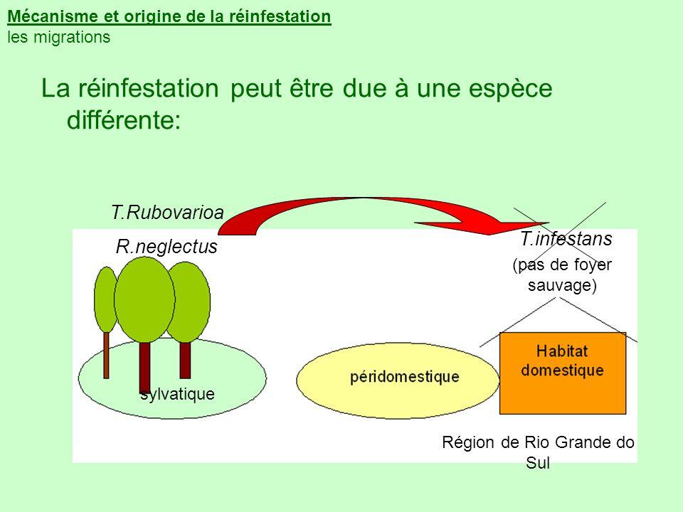Mécanisme et origine de la réinfestation les migrations