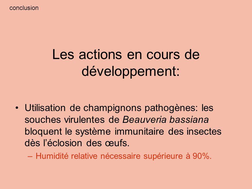 Les actions en cours de développement: