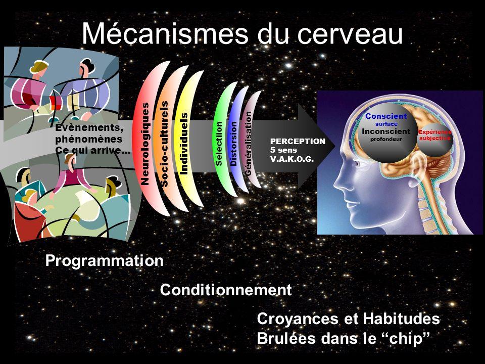 Mécanismes du cerveau Programmation Conditionnement