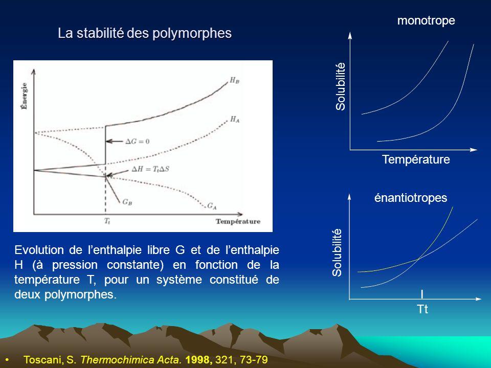 La stabilité des polymorphes
