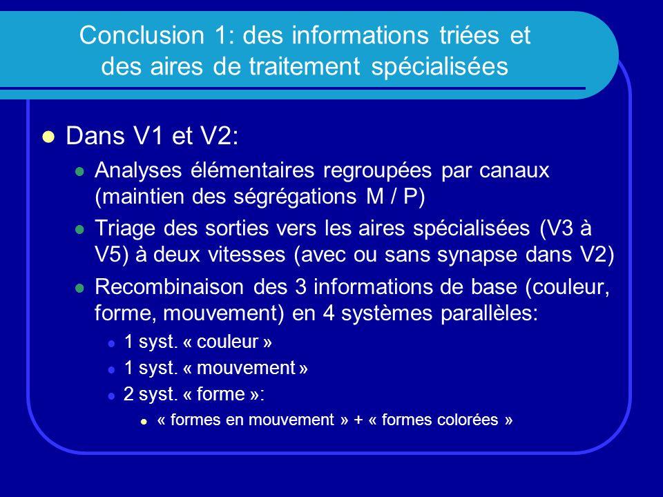 Conclusion 1: des informations triées et des aires de traitement spécialisées
