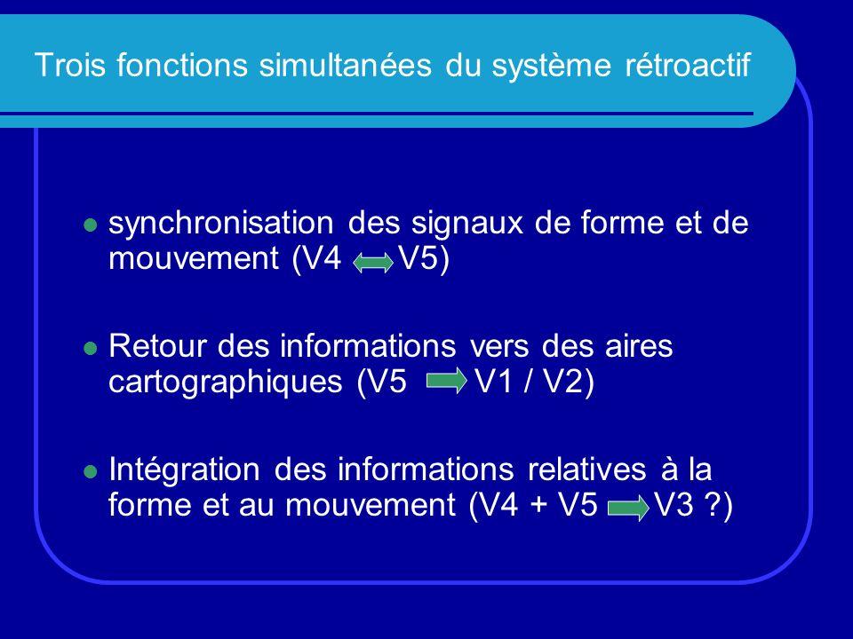 Trois fonctions simultanées du système rétroactif