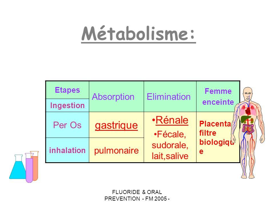 Métabolisme: gastrique Rénale Absorption Elimination Per Os