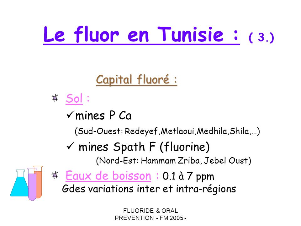 FLUORIDE & ORAL PREVENTION - FM 2005 -
