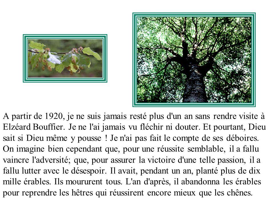 A partir de 1920, je ne suis jamais resté plus d un an sans rendre visite à Elzéard Bouffier.