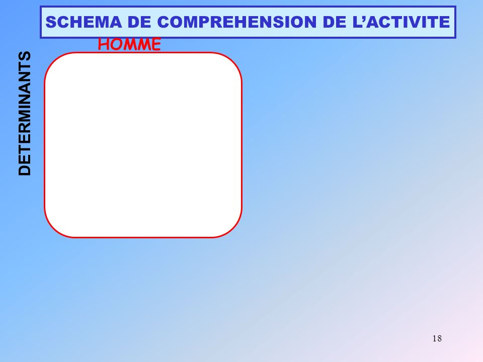 SCHEMA DE COMPREHENSION DE L'ACTIVITE