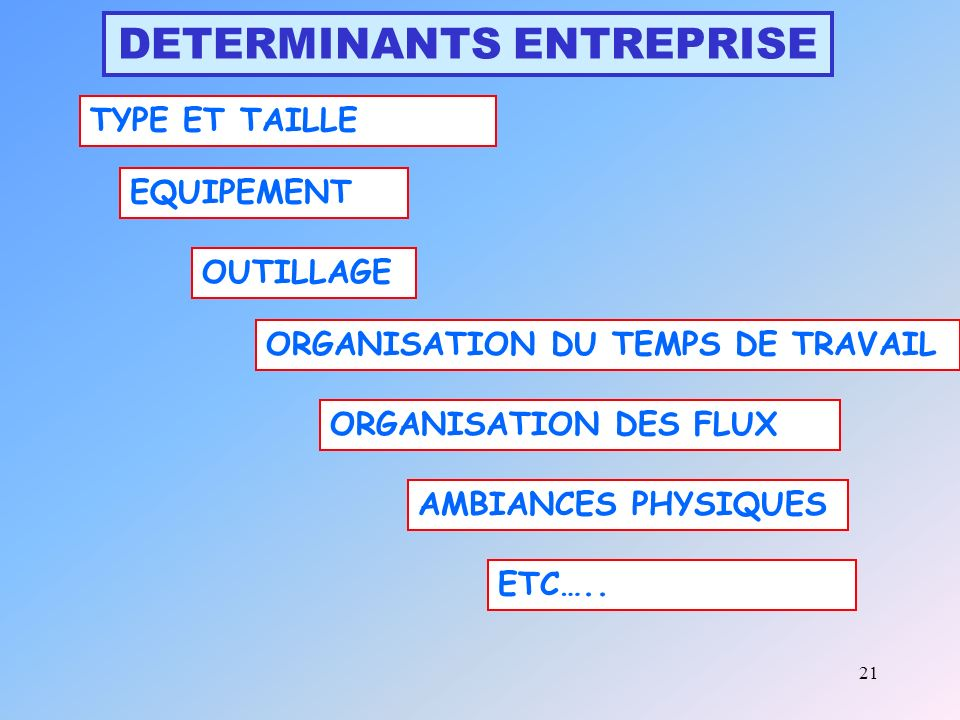 DETERMINANTS ENTREPRISE