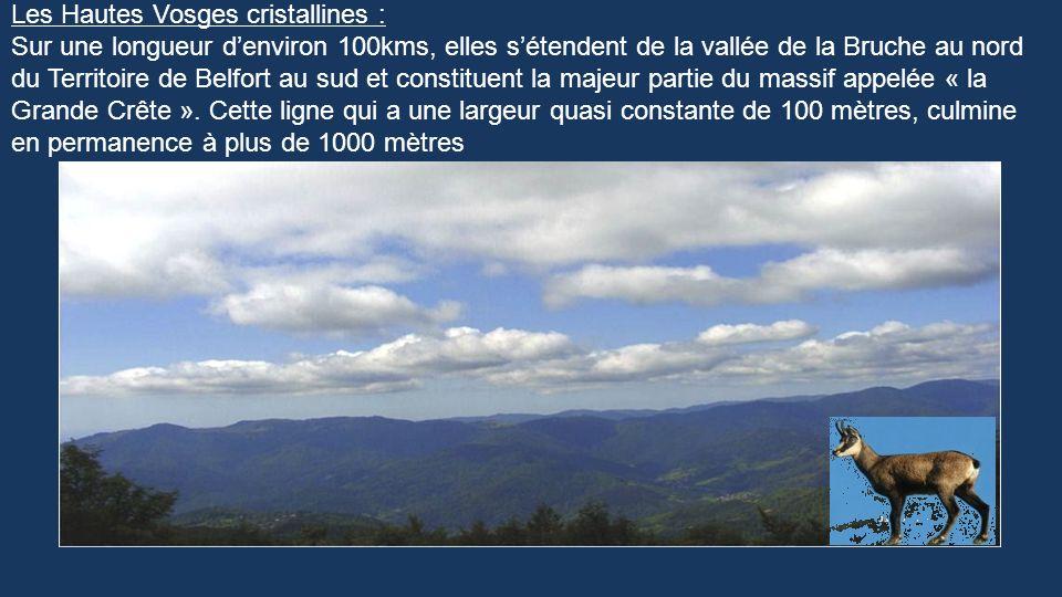 Les Hautes Vosges cristallines :