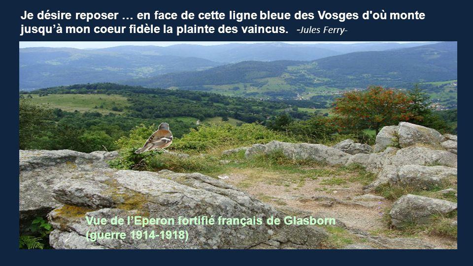 Je désire reposer … en face de cette ligne bleue des Vosges d où monte jusqu'à mon coeur fidèle la plainte des vaincus. -Jules Ferry-