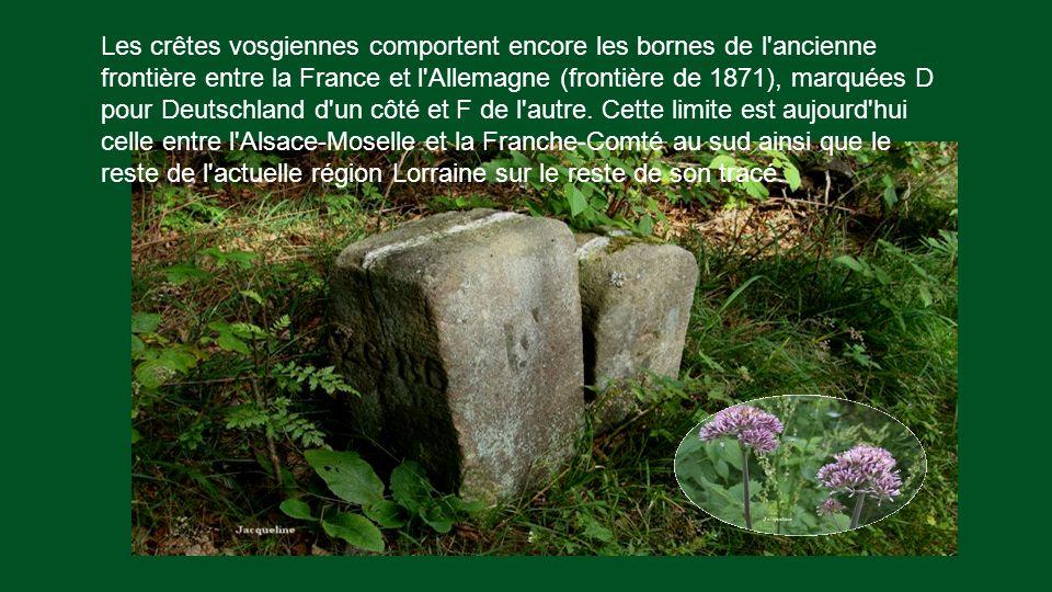 Les crêtes vosgiennes comportent encore les bornes de l ancienne frontière entre la France et l Allemagne (frontière de 1871), marquées D pour Deutschland d un côté et F de l autre.