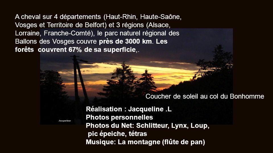 A cheval sur 4 départements (Haut-Rhin, Haute-Saône, Vosges et Territoire de Belfort) et 3 régions (Alsace, Lorraine, Franche-Comté), le parc naturel régional des Ballons des Vosges couvre près de 3000 km. Les forêts couvrent 67% de sa superficie,.