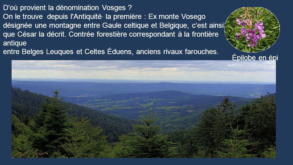 D'où provient la dénomination Vosges