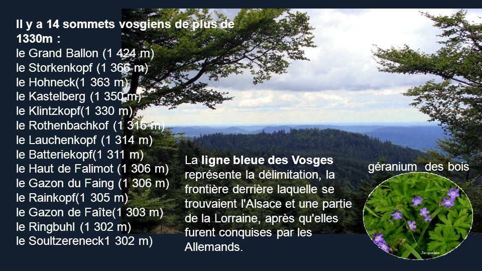 Il y a 14 sommets vosgiens de plus de 1330m :