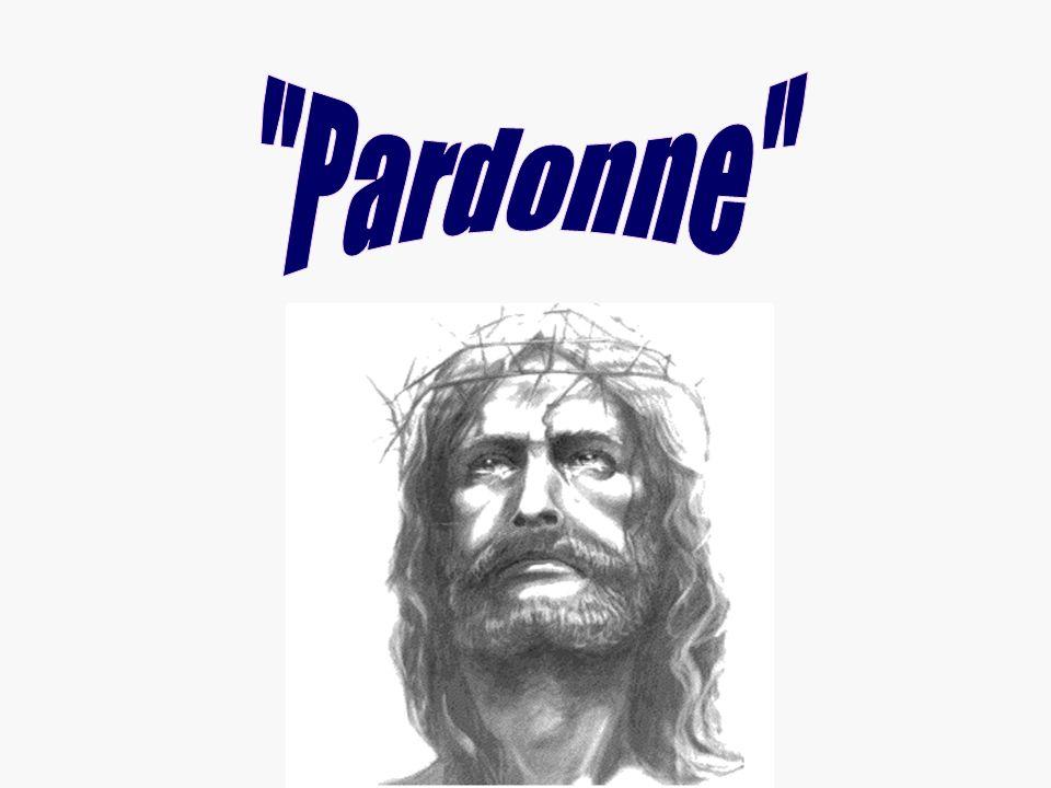 Pardonne