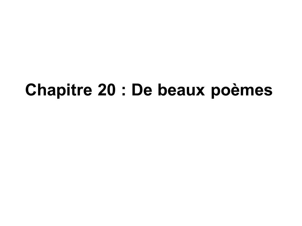 Chapitre 20 : De beaux poèmes