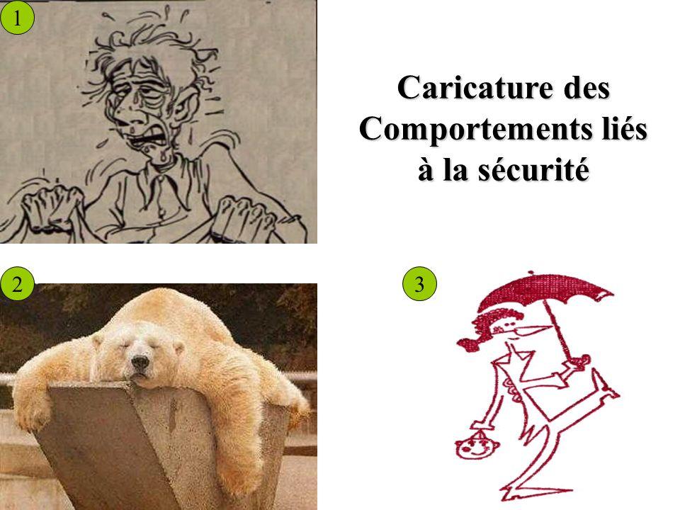 Caricature des Comportements liés à la sécurité