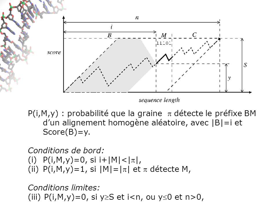 P(i,M,y) : probabilité que la graine  détecte le préfixe BM d'un alignement homogène aléatoire, avec |B|=i et Score(B)=y.