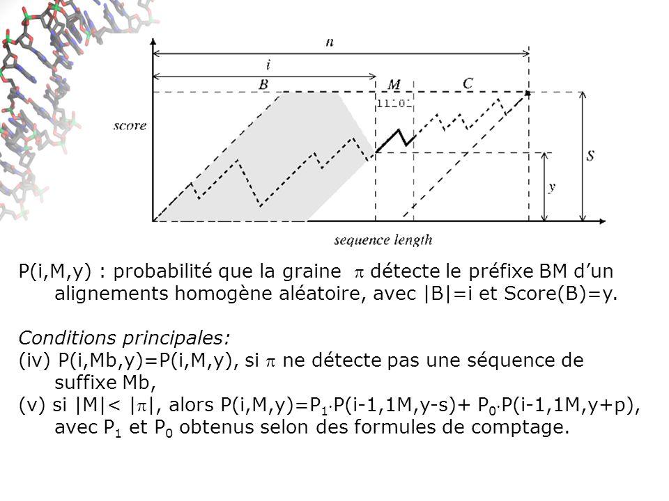 P(i,M,y) : probabilité que la graine  détecte le préfixe BM d'un alignements homogène aléatoire, avec |B|=i et Score(B)=y.