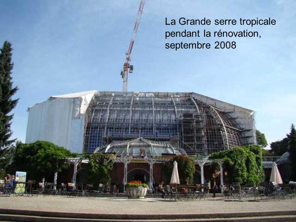 La Grande serre tropicale pendant la rénovation, septembre 2008