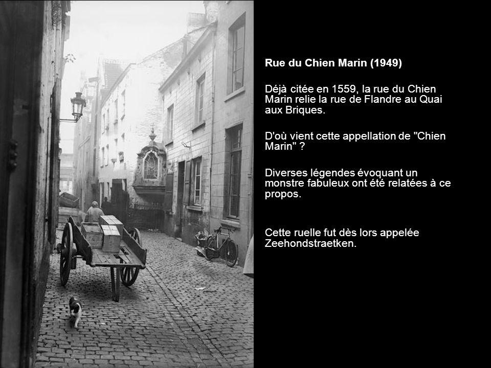 Rue du Chien Marin (1949) Déjà citée en 1559, la rue du Chien Marin relie la rue de Flandre au Quai aux Briques.