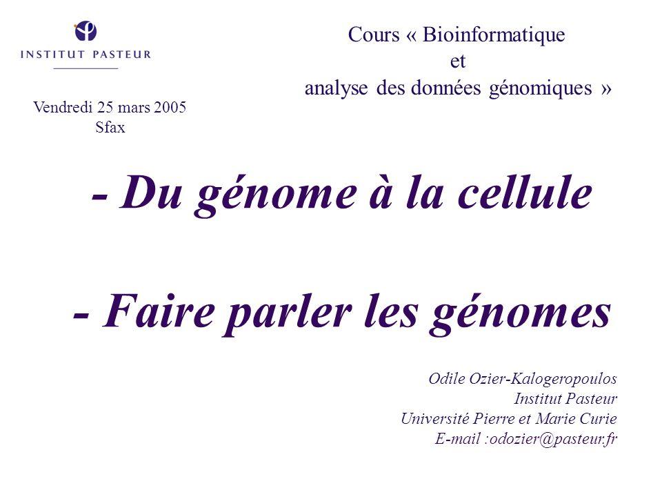 - Du génome à la cellule - Faire parler les génomes