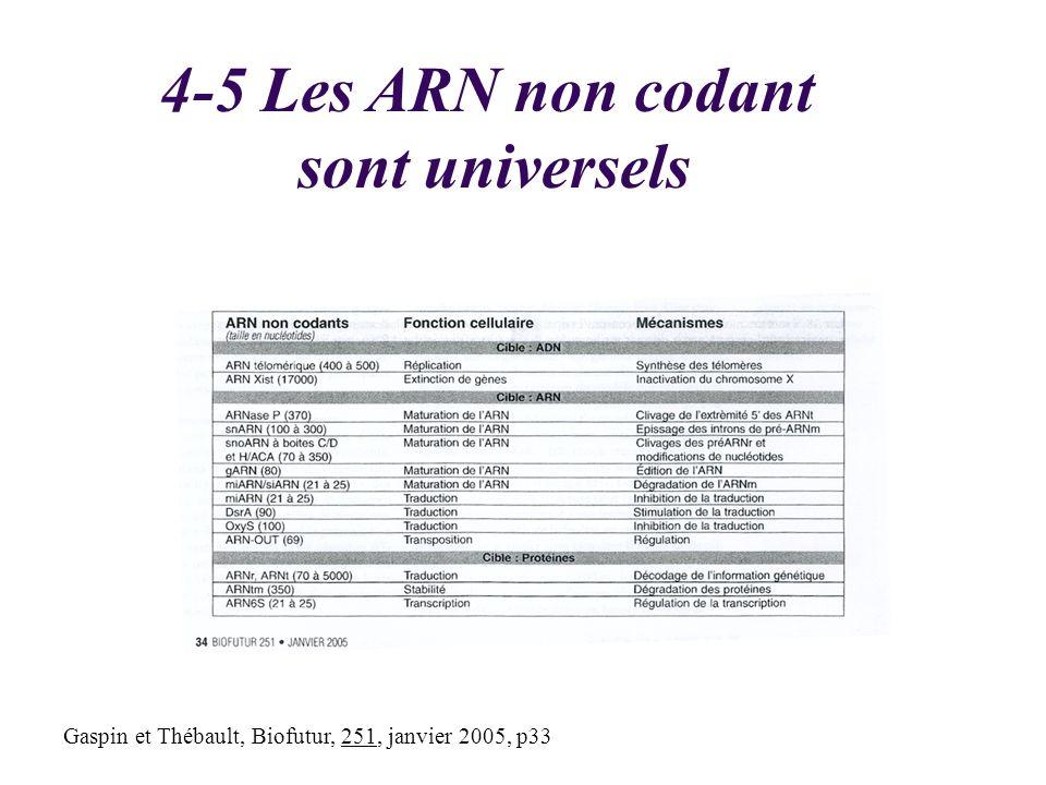 4-5 Les ARN non codant sont universels