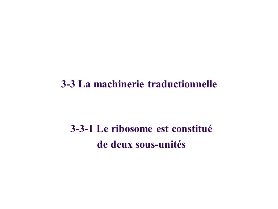 3-3 La machinerie traductionnelle