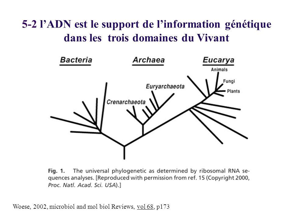 5-2 l'ADN est le support de l'information génétique