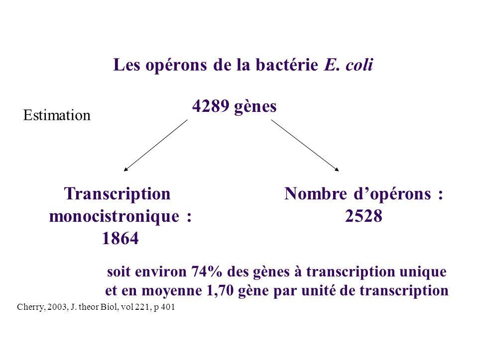 Les opérons de la bactérie E. coli