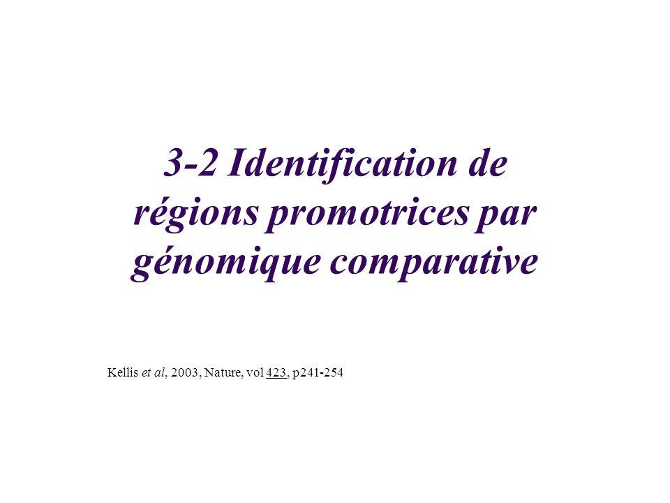 3-2 Identification de régions promotrices par génomique comparative