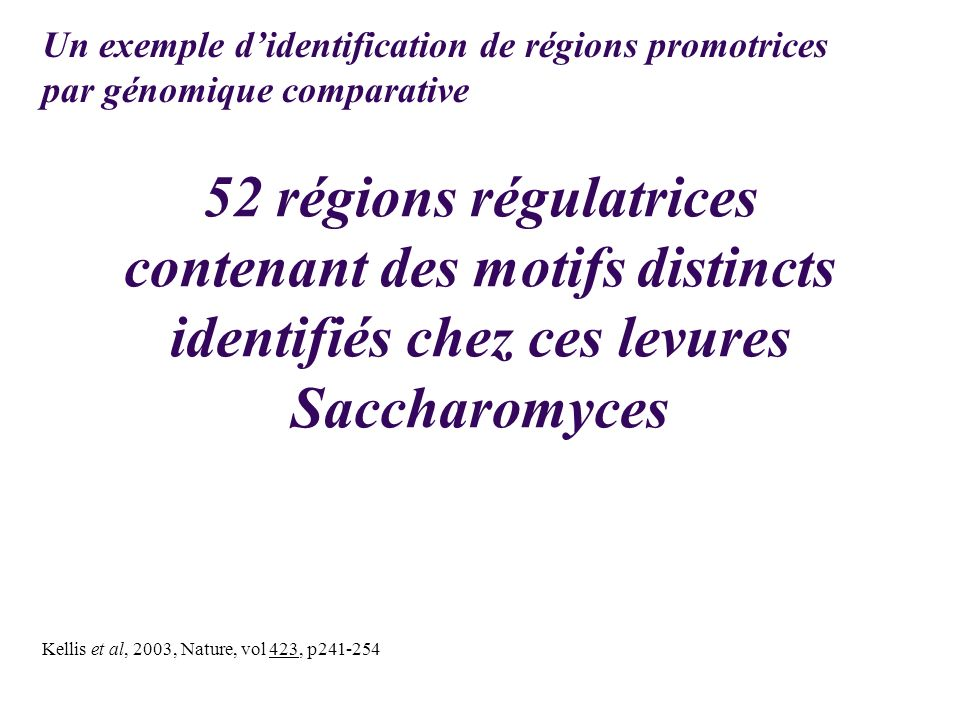 Un exemple d'identification de régions promotrices par génomique comparative