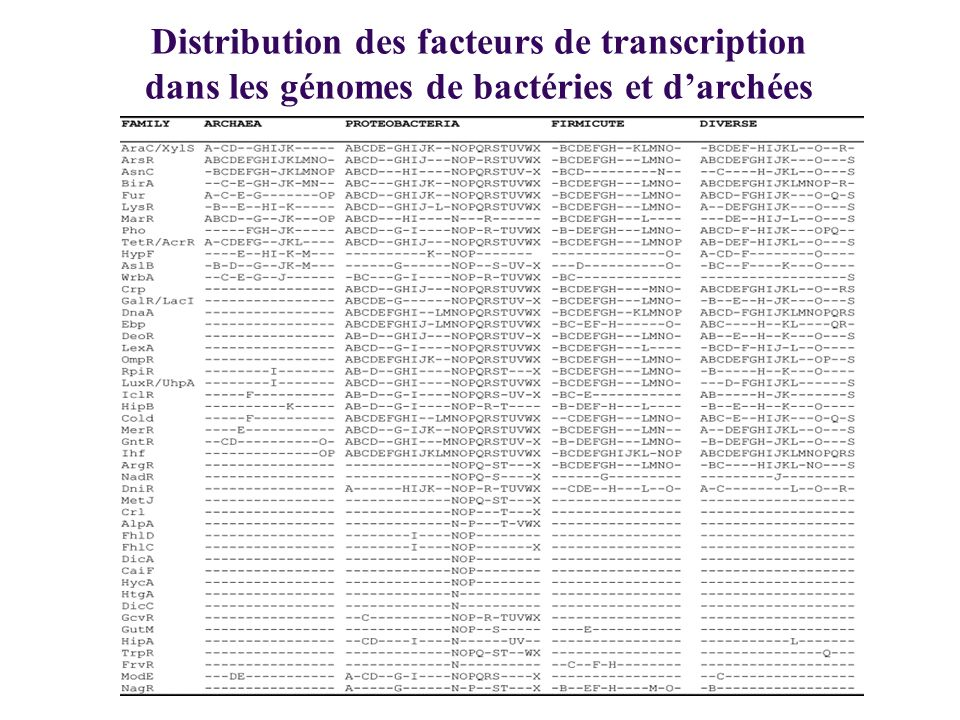 Distribution des facteurs de transcription