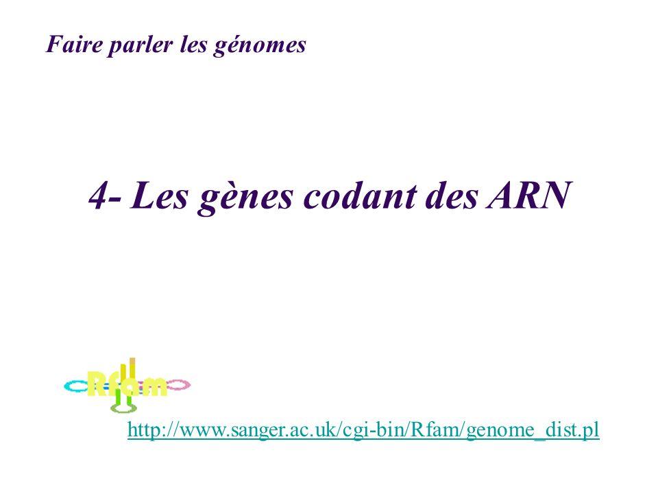 4- Les gènes codant des ARN