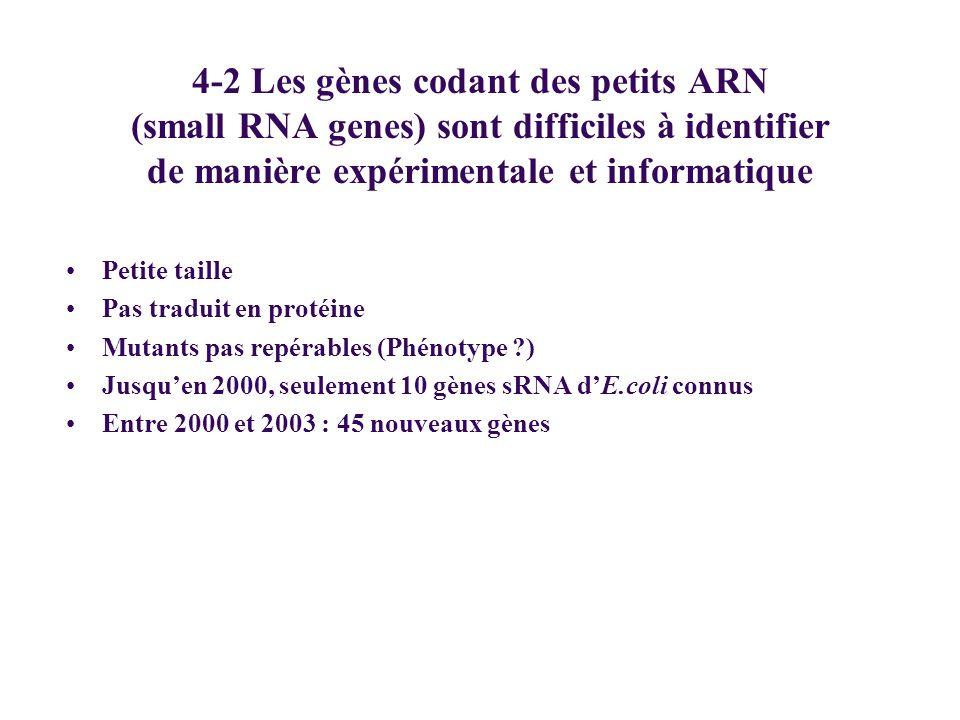 4-2 Les gènes codant des petits ARN (small RNA genes) sont difficiles à identifier de manière expérimentale et informatique