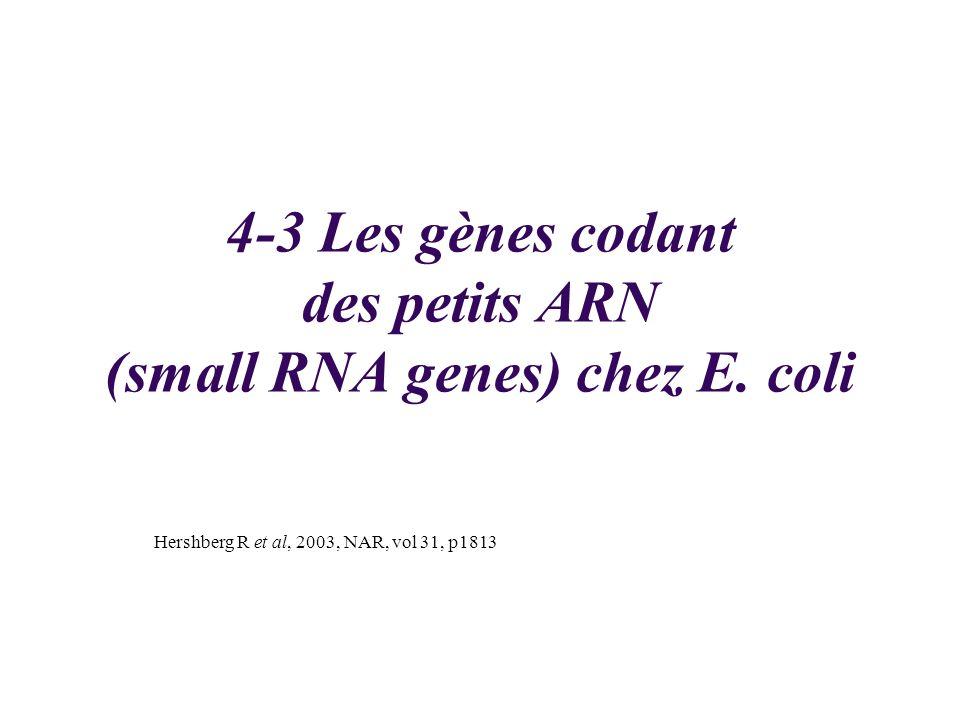 4-3 Les gènes codant des petits ARN (small RNA genes) chez E. coli