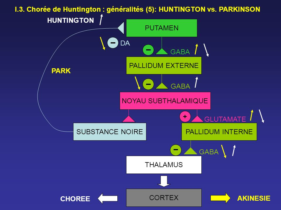 I.3. Chorée de Huntington : généralités (5): HUNTINGTON vs. PARKINSON