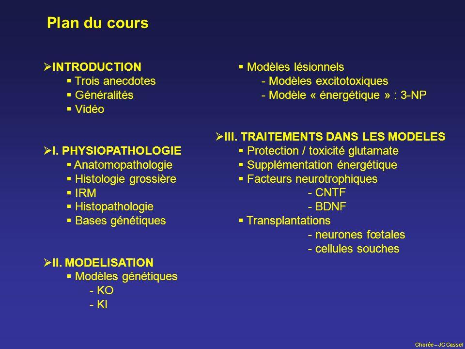 Plan du cours Modèles lésionnels - Modèles excitotoxiques