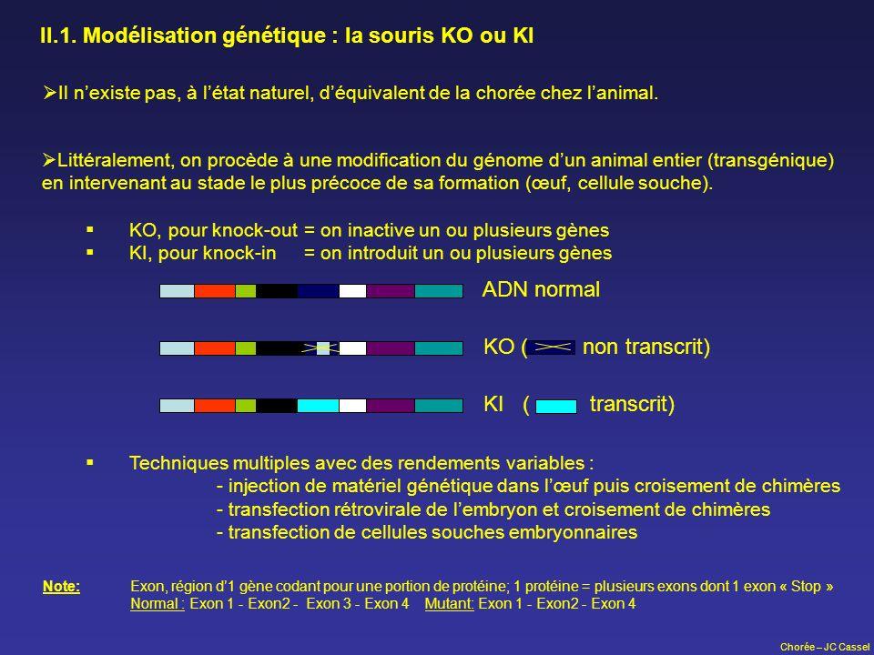 II.1. Modélisation génétique : la souris KO ou KI