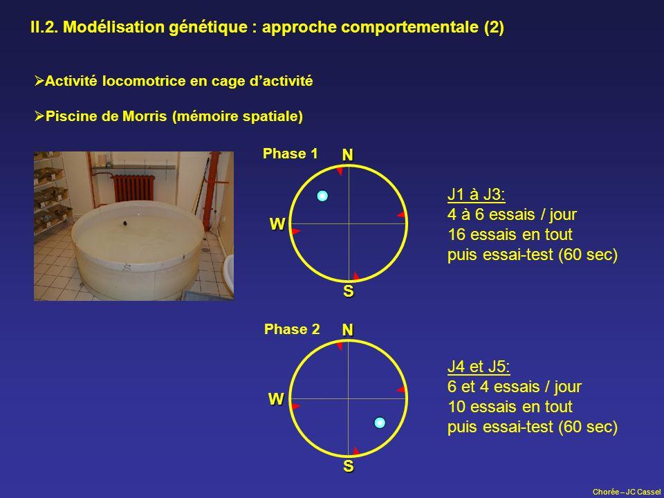 II.2. Modélisation génétique : approche comportementale (2)