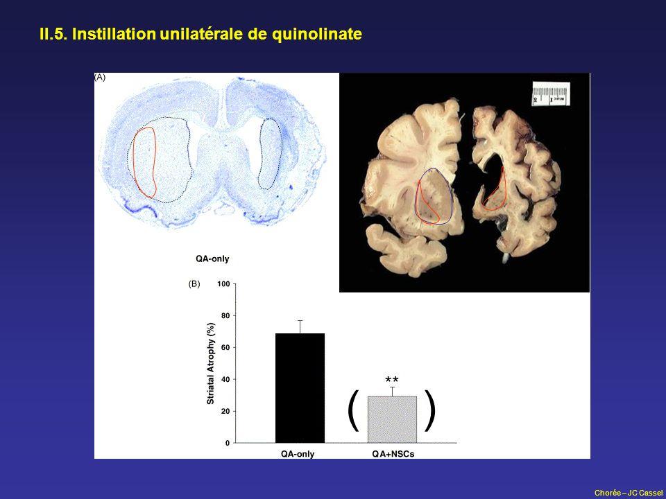II.5. Instillation unilatérale de quinolinate